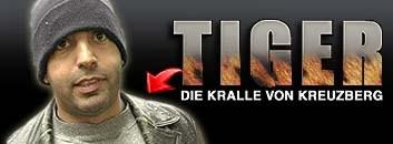 Tiger, die Kralle von Kreuzberg